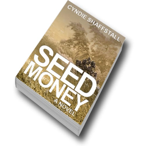 Seed Money paperback